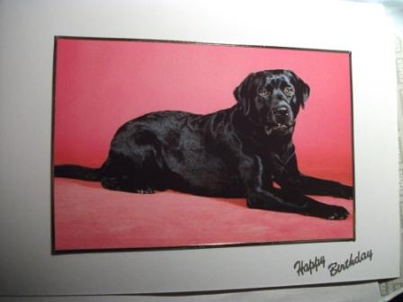 Message Inside Card Reads Happy Birthday Every Has A Different Beautiful Picture Of Black Labrador